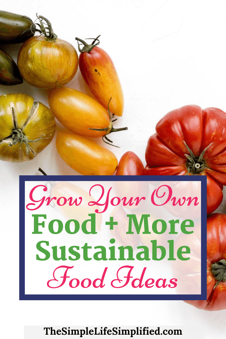 Grow Your Own Food + Other Sustainable Food Ideas