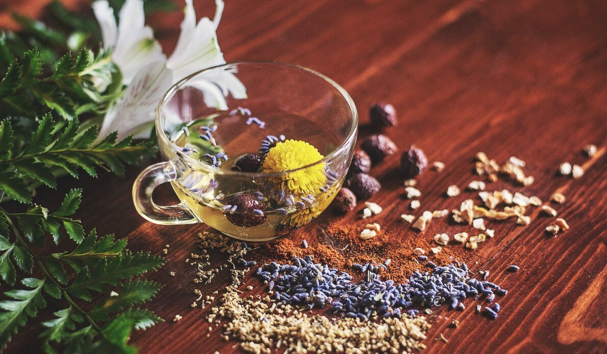 Supportive Herbs for Women's Health