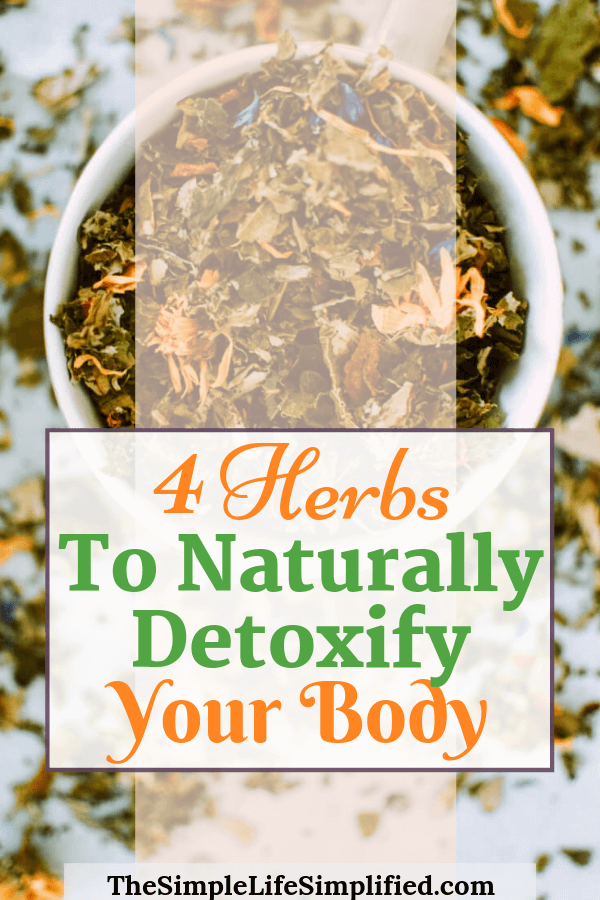 4 Herbs To Naturally Detox Your Body