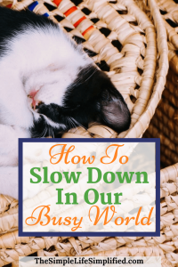 How To Slow Down In A Busy World