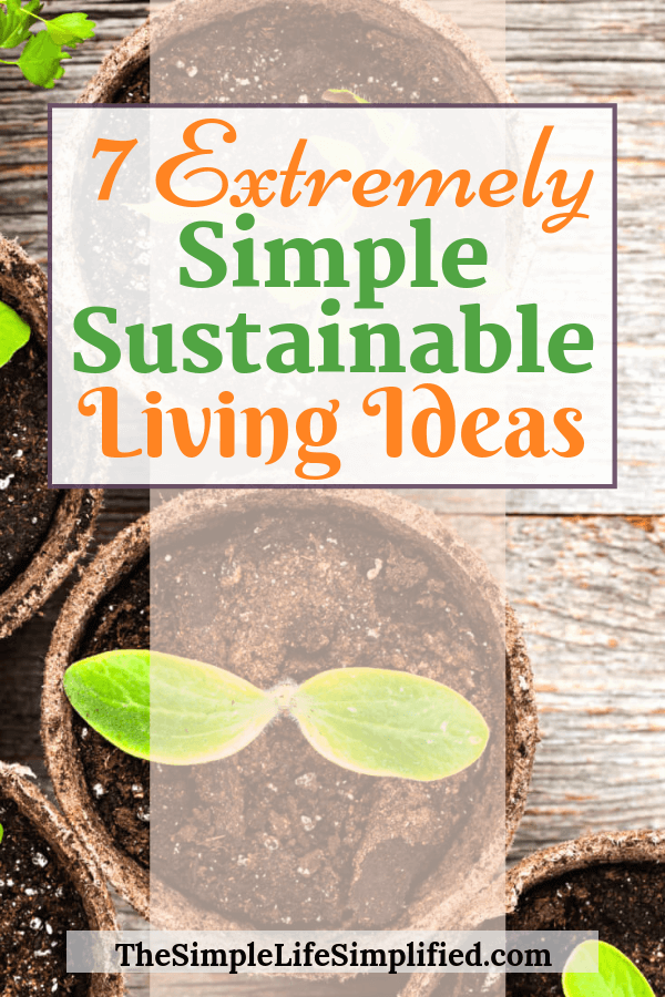7 Simple Sustainable Living Ideas For Beginners