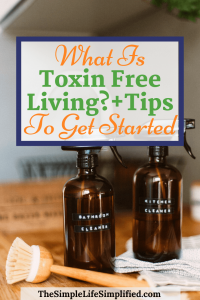 What Is Toxin Free Living + Tips