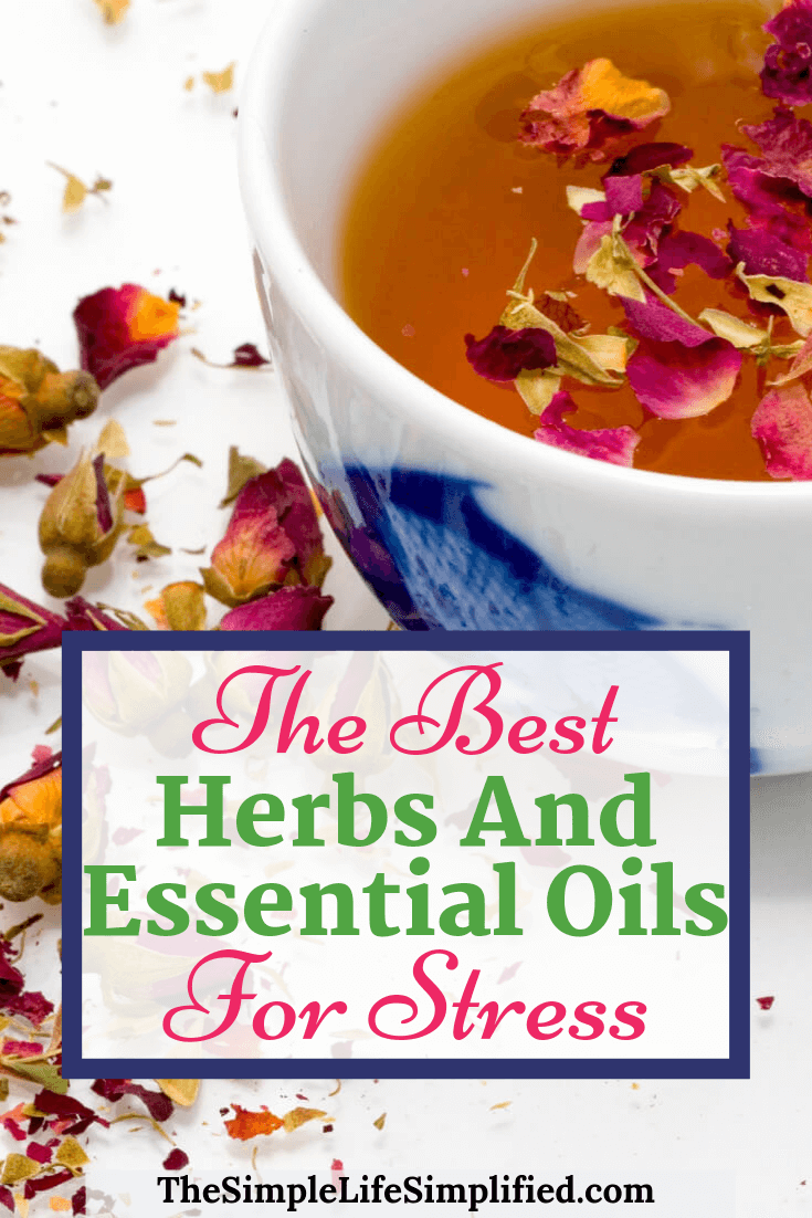 Best Herbs And Essential Oils For Stress