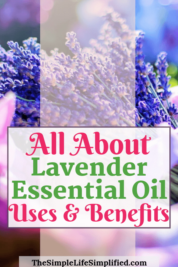Key Lavender Essential Oil Uses And Benefits