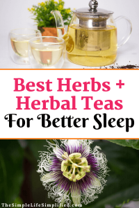 Best Herbs and Herbal Tea Recipes for Sleep