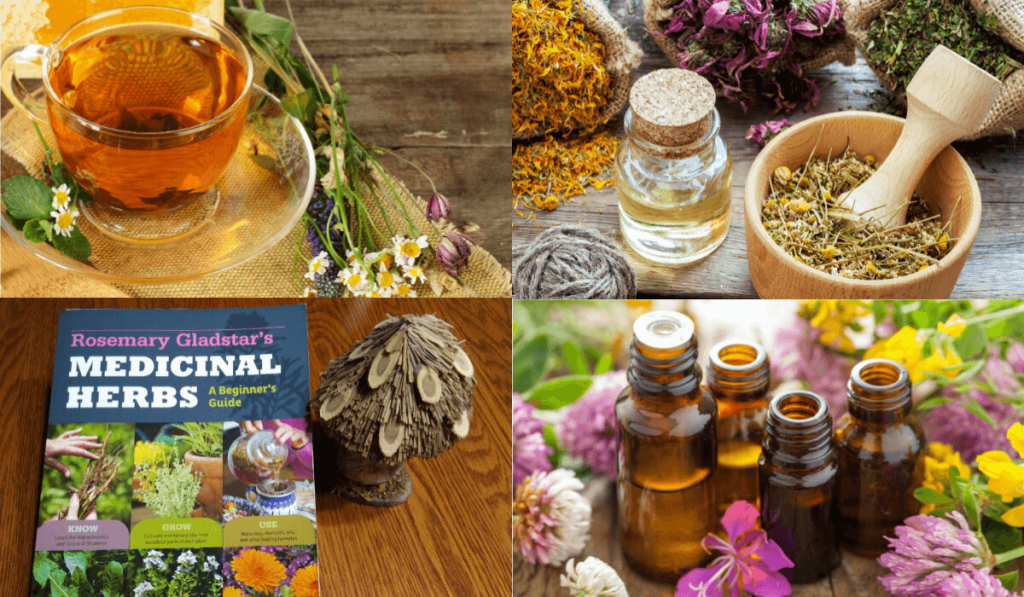 Useful And Fun Gifts For Herbalists