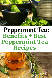 Peppermint Tea Benefits and Recipes